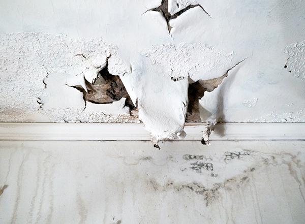 Traitement de l'humidité ascensionnelle pour une maison saine