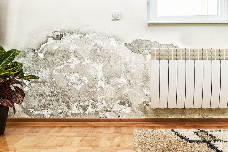 Traitements de surface pour lutter contre les murs humides
