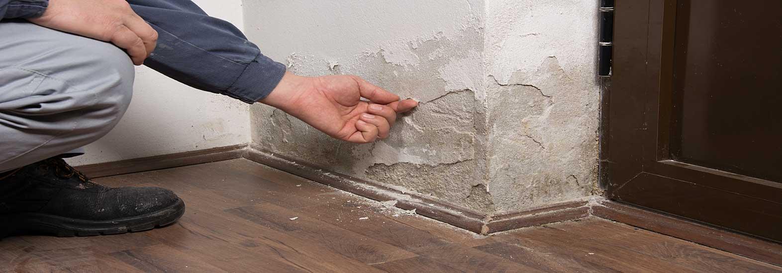 Devis Traitement Humidité à Namur ▷ Coût : Entreprise, diagnostic remontées capillaires murs