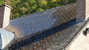 Démoussage d'une toiture par Humihouse