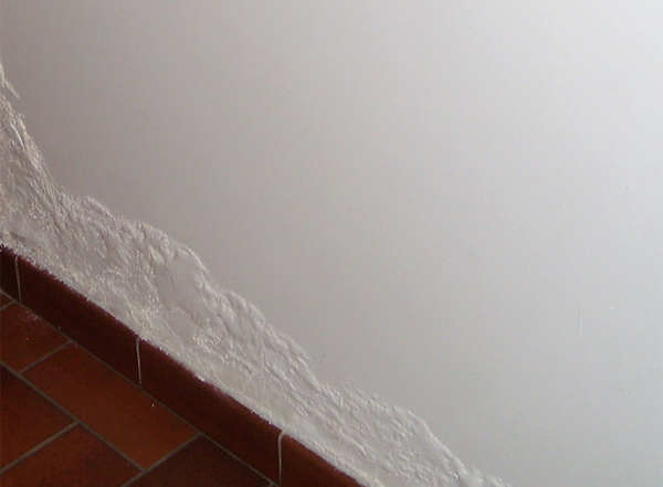 Les conséquences du salpêtre sur vos murs