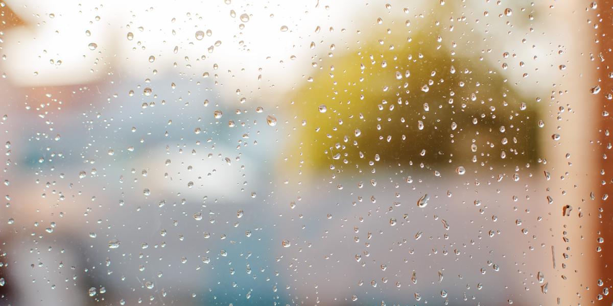 Les conséquences de la condensation dans la maison